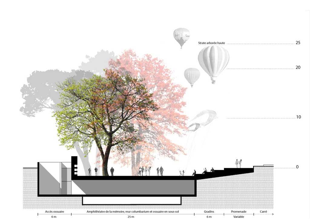 Traverses - Coupe de principe sur l'amphithéâtre de la mémoire et l'ossuaire