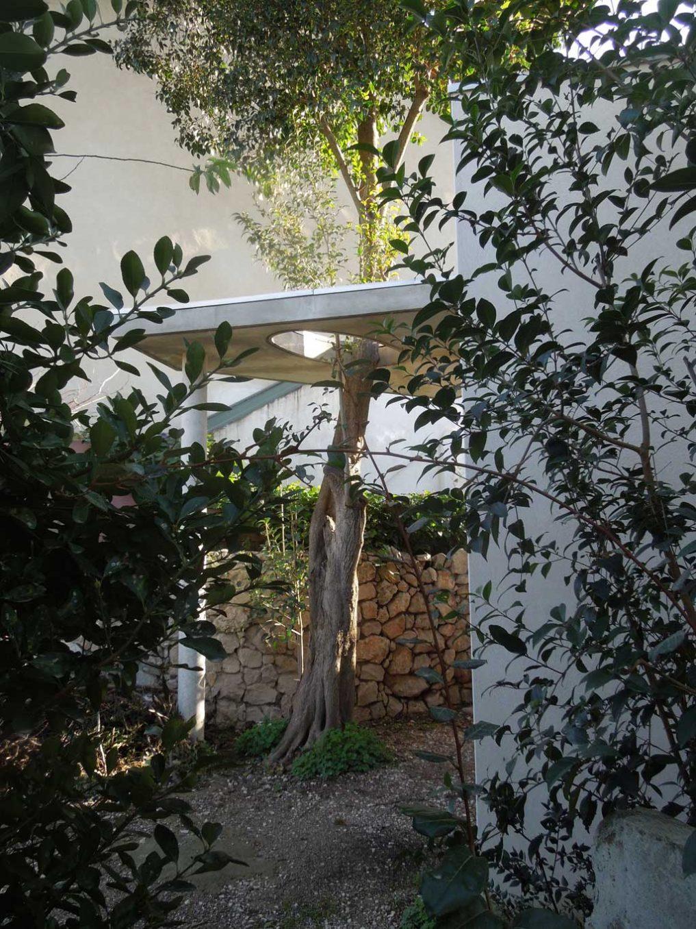 Traverses - séquence d'entrée autour de l'arbre existant