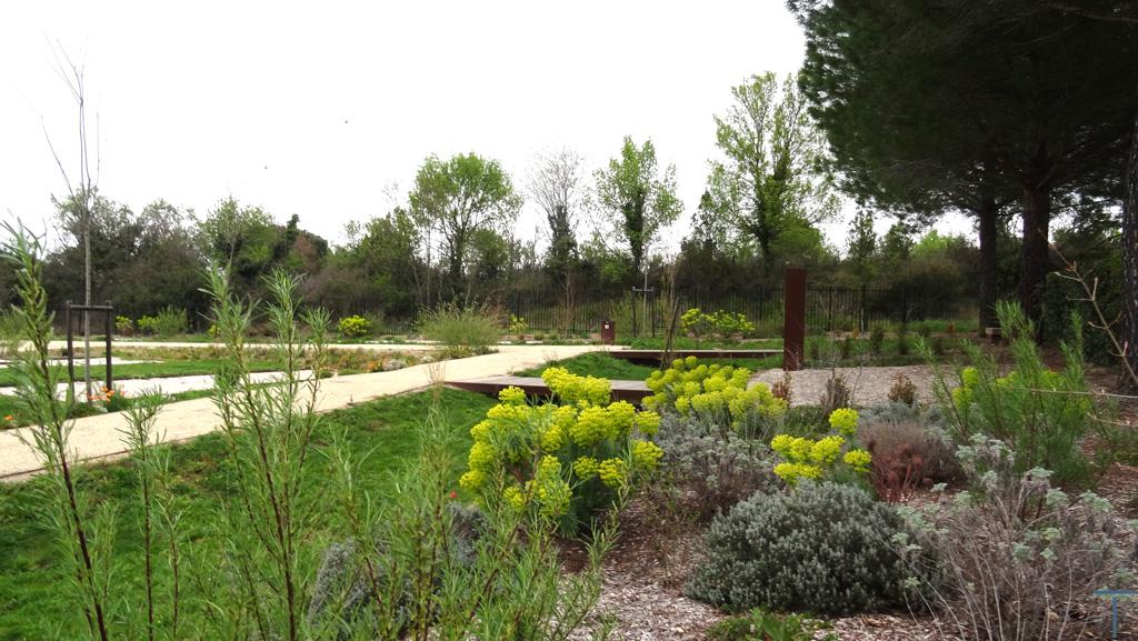 Traverses - les noues de gestion des eaux pluviales