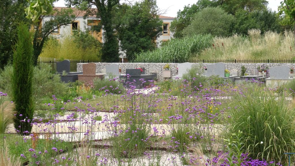 Traverses - vue du cimetière 3 ans après plantations
