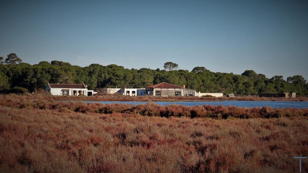 Traverses - vue de l'état existant depuis les étangs