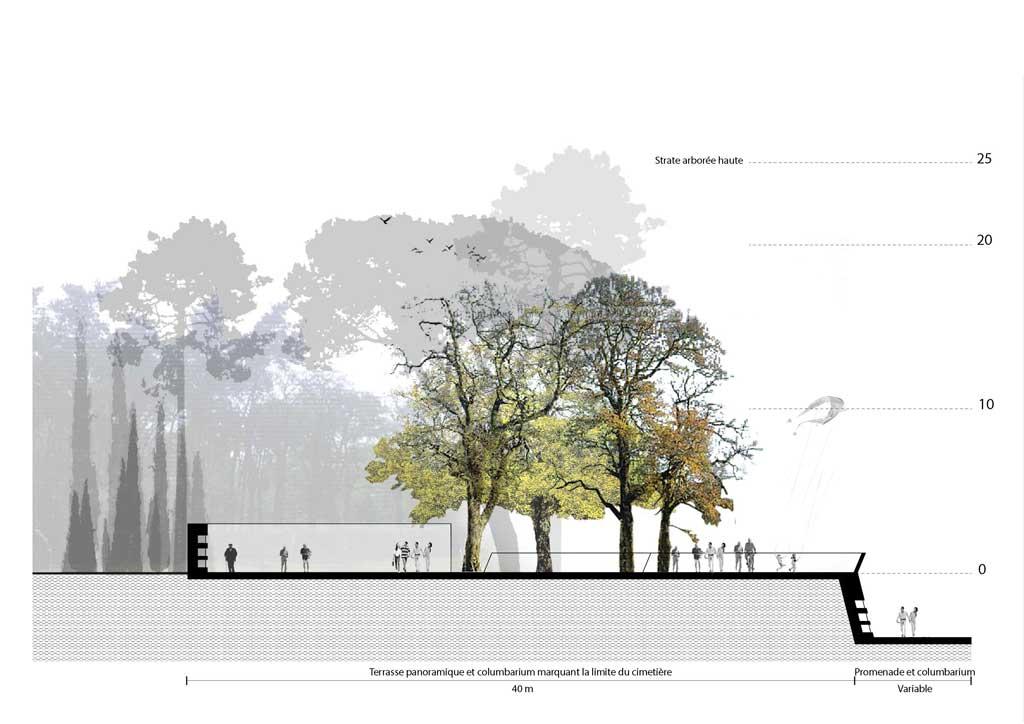Traverses - Coupe de principe sur la terrasse panoramique et ses columbariums
